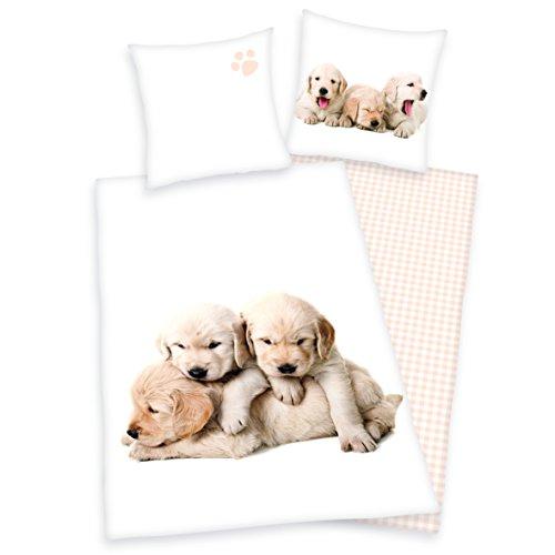 Herding Young Collection Bettwäsche-Set, Hunde Wendemotiv, Bettbezug 135 x 200 cm, Kopfkissenbezug 80 x 80 cm, Flanell/Biber